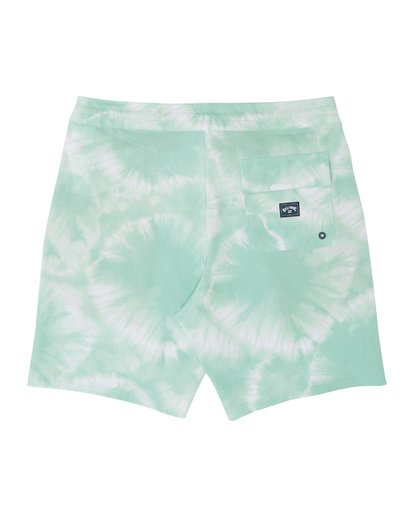 "1 All Day Riot Lo Tides Boardshort 19"" Green M1451BRL Billabong"