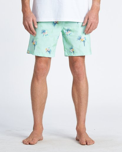 2 Sundays Layback Boardshorts Green M1801BSB Billabong