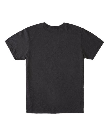 4 Access Hawaii Short Sleeve T-Shirt Black M401VBAC Billabong