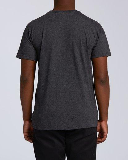2 Access Hawaii Short Sleeve T-Shirt Black M401VBAC Billabong