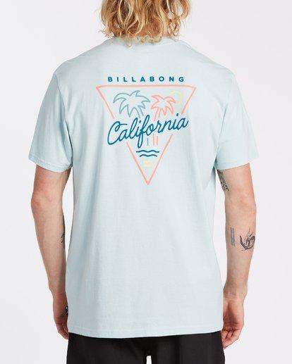 2 Cali Short Sleeve T-Shirt Blue M4041BCA Billabong