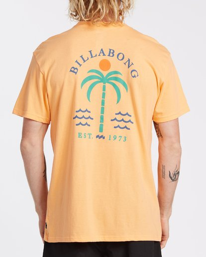 2 EC-Schooner Short Sleeve T-Shirt Grey M4041BEO Billabong