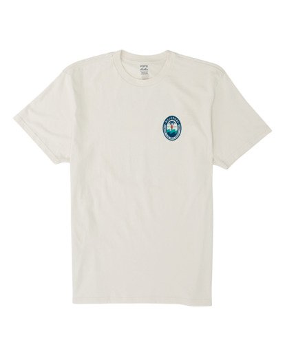 3 Palmer Short Sleeve T-Shirt Brown M4041BPA Billabong