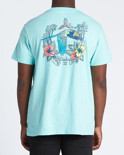 2 Parrot Bay Short Sleeve T-Shirt Grey M4041BPB Billabong