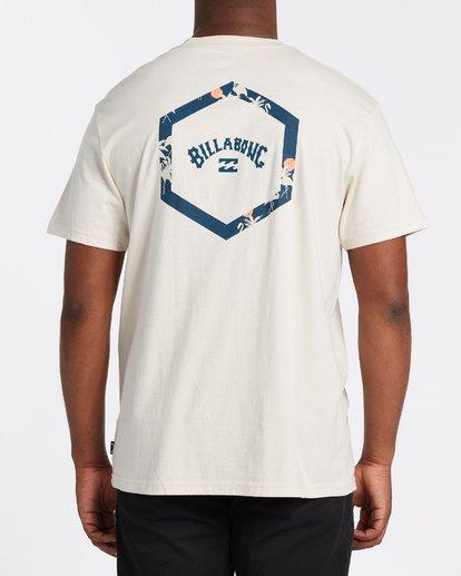 2 Access Short Sleeve T-Shirt Brown M4042BAC Billabong