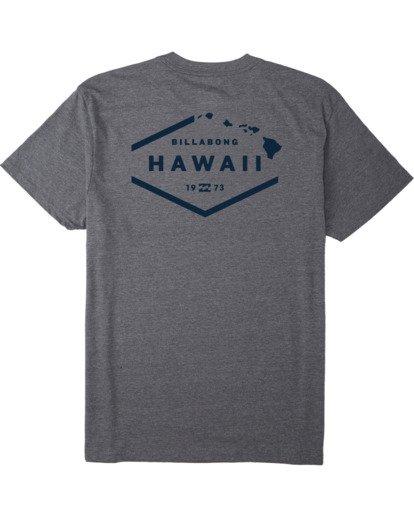 1 Geo Hawaii T-Shirt Green M4043BGH Billabong