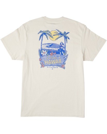 1 Haole T-Shirt Brown M4043BHA Billabong