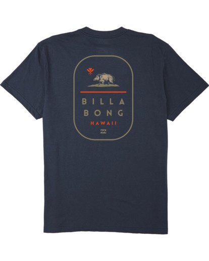 4 Hawaii Tour T-Shirt Blue M4043BHR Billabong