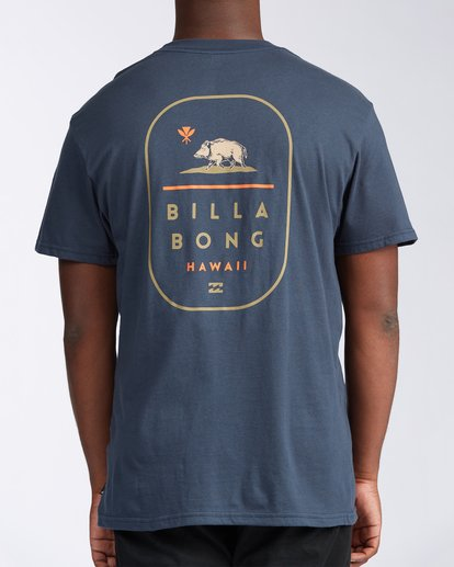 2 Hawaii Tour T-Shirt Blue M4043BHR Billabong