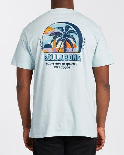 2 Palmas T-Shirt Blue M4043BPA Billabong