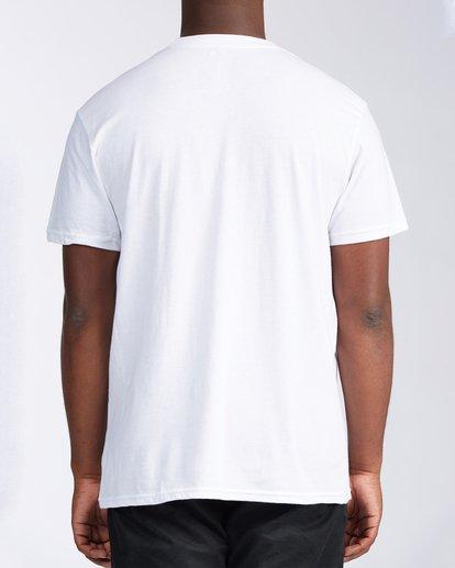 2 State Hawaii T-Shirt White M404LSHI Billabong