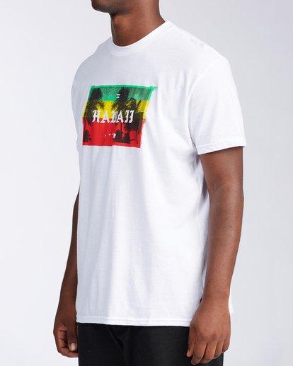 1 State Hawaii T-Shirt White M404LSHI Billabong