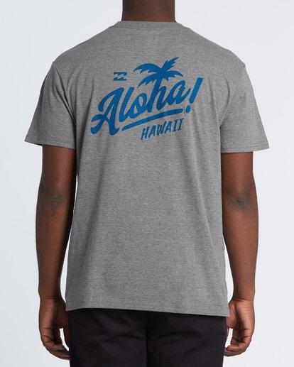 2 Aloha T-Shirt Grey M404VBAL Billabong