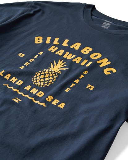 2 Pineapple T-Shirt Blue M404VBPI Billabong