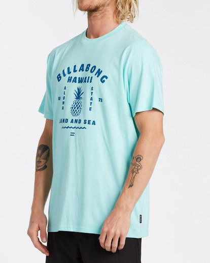 1 Pineapple T-Shirt Grey M404VBPI Billabong