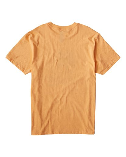 1 Tourist Trap Fl T-Shirt  M404VBTF Billabong