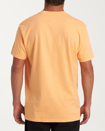 2 Breeze Short Sleeve T-Shirt Grey M404WBBR Billabong