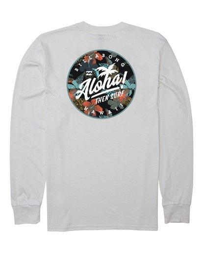 1 Aloha Badge Long Sleeve T-Shirt White M405VBAB Billabong