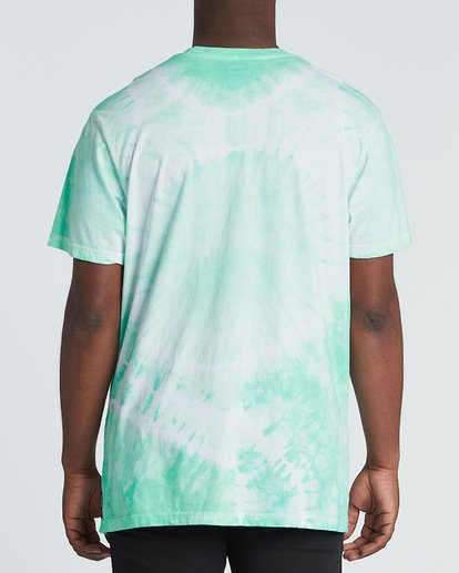 2 Essential Short Sleeve T-Shirt Green M4251BES Billabong