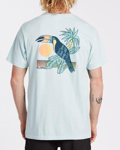 2 Dominical Pocket Short Sleeve T-Shirt Blue M4332BDO Billabong