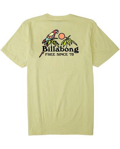 4 Calm T-Shirt Yellow M4333BCA Billabong