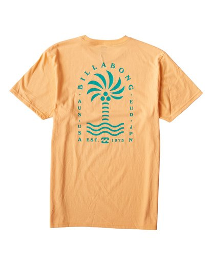 1 Palmspin T-Shirt Orange M433VBPS Billabong