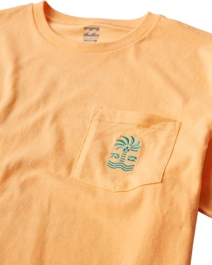 2 Palmspin T-Shirt Orange M433VBPS Billabong