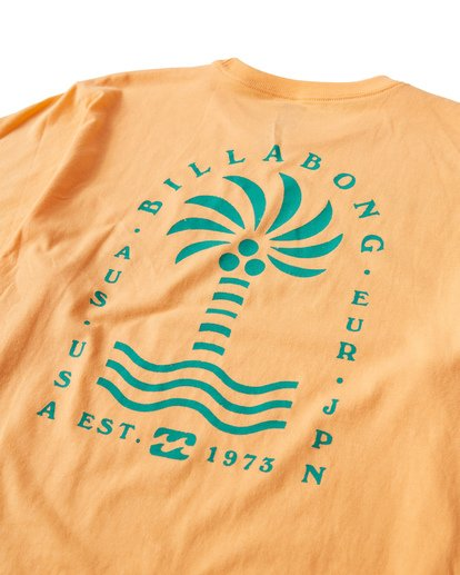 3 Palmspin T-Shirt Orange M433VBPS Billabong