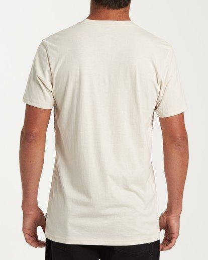 2 Lowtide Short Sleeve T-Shirt Brown M433WBLT Billabong