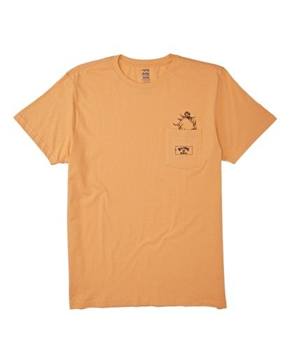 3 Lorax T-Shirt Grey M4372BLO Billabong