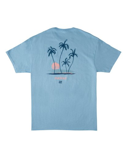 4 Cruiser Hawaii Short Sleeve T-Shirt Blue M4602BCR Billabong