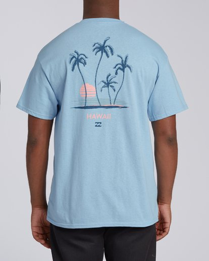 2 Cruiser Hawaii Short Sleeve T-Shirt Blue M4602BCR Billabong