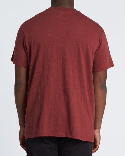 2 Mesa Slub Crew T-Shirt Brown M9041BMS Billabong