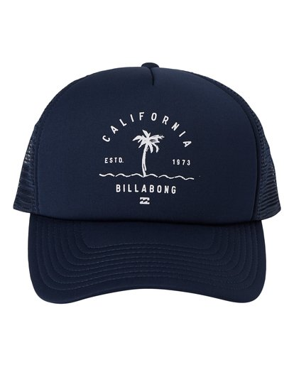 1 Vibes Trucker Hat Multicolor MAHW1BVR Billabong
