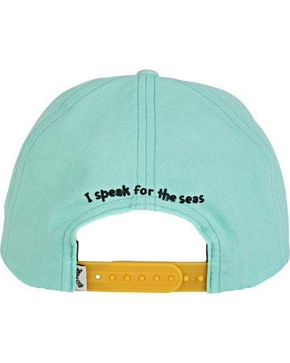 2 Swomee Snapback Hat Green MAHW2BSO Billabong