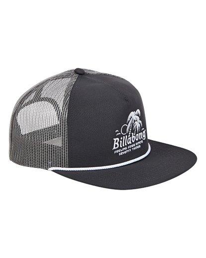2 Alliance Trucker Hat Grey MAHWTBAL Billabong
