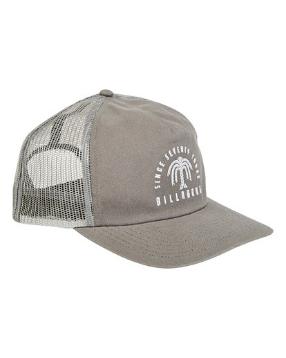 2 Breakdown Trucker Hat Grey MAHWTBBR Billabong