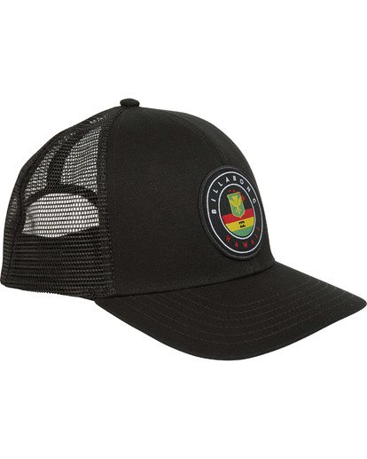 2 NATIVE TRUCKER  MAHWTBNT Billabong