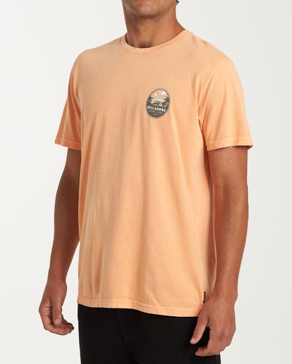 1 Volcano Short Sleeve T-Shirt Orange MT13WBVO Billabong