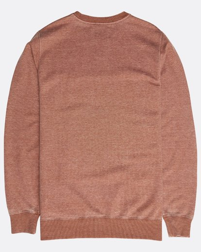 1 All Day Washed Crew Sweatshirt Grün N1FL02BIP9 Billabong