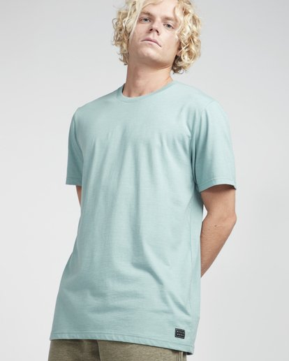 2 All Day Crew T-Shirt Verde N1JE04BIP9 Billabong
