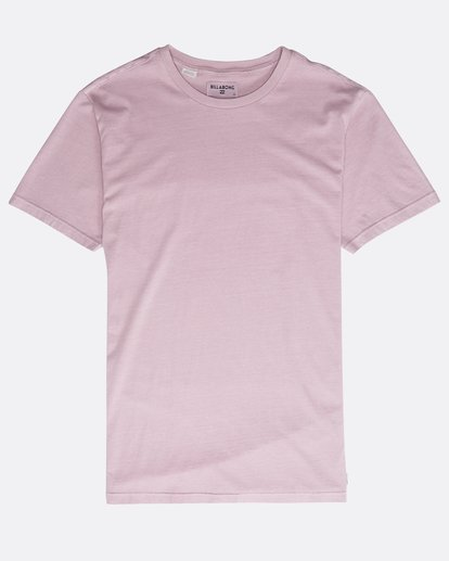 0 All Day Washed Crew T-Shirt Purple N1JE05BIP9 Billabong