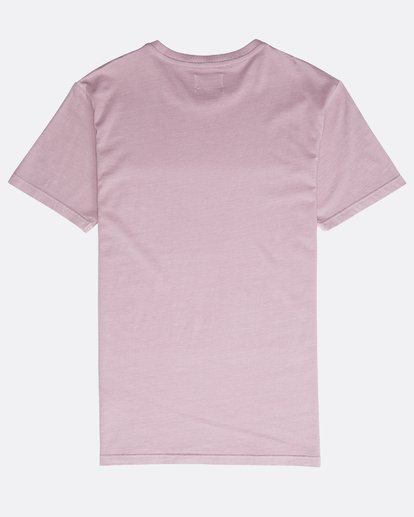 1 All Day Washed Crew T-Shirt Purple N1JE05BIP9 Billabong