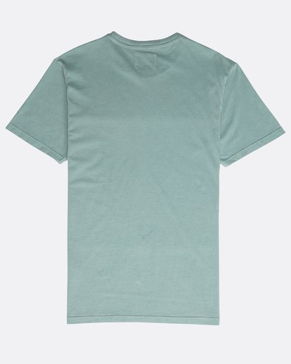 1 All Day Washed Crew T-Shirt Verde N1JE05BIP9 Billabong