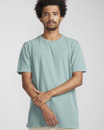 2 All Day Washed Crew T-Shirt Verde N1JE05BIP9 Billabong