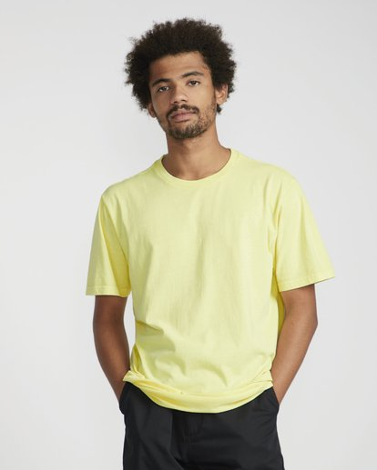 0 All Day Washed Crew T-Shirt Jaune N1JE05BIP9 Billabong