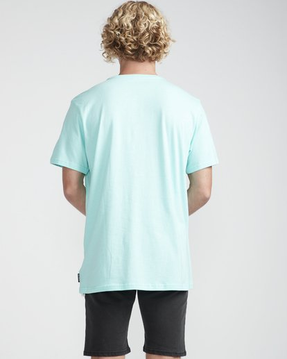 4 Section T-Shirt Green N1SS07BIP9 Billabong