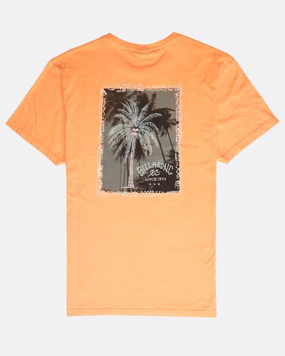 1 Get Back T-Shirt Orange N1SS14BIP9 Billabong