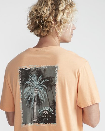 2 Get Back T-Shirt Orange N1SS14BIP9 Billabong