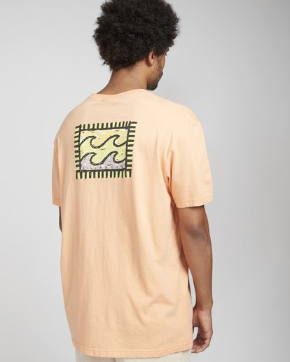 5 Nairobi T-Shirt Orange N1SS28BIP9 Billabong